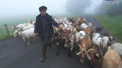 """""""Nos vacances en France"""" : le tourisme vert et à la ferme dans le Puy-de-Dôme"""