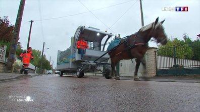 La France des solutions : les chevaux remplacent les camions poubelle de Troyes