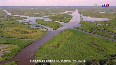 La France secrète : à la découverte du marais de Brière, l'Amazonie à la française