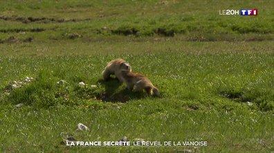 La France secrète : en Savoie, dans la réserve naturelle du Plan de Tuéda