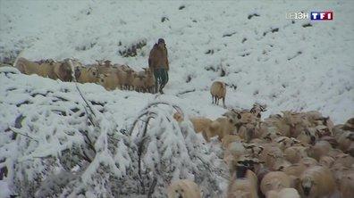 La neige attendue en Haute-Savoie