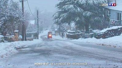La neige tombe en abondance dans le Nord-Est de l'Hexagone