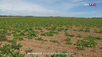 La sécheresse s'aggrave en Eure-et-Loir