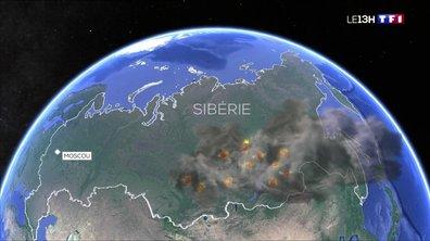 La Sibérie ravagée par des incendies : un écosystème qui s'effondre ?