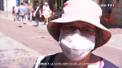 La victoire écologiste dans les villes est-elle représentative de ce que pensent tous les Français ?