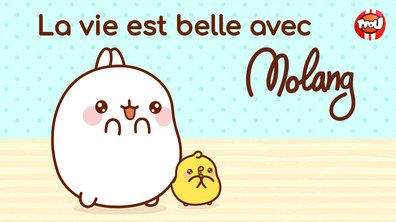 Molang - Compilation La vie est belle - My Best Friend