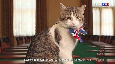 Larry the cat : 10 ans au service de sa majesté