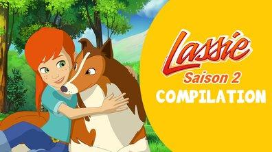 Compilation Lassie  : toutes les vidéos de la saison 2