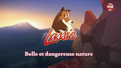 Belle et dangereuse nature
