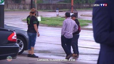 Latinos, clandestins à vie