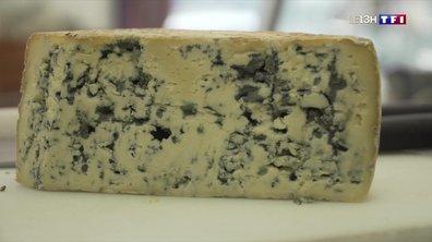 Le bleu du Queyras, un fromage de caractère