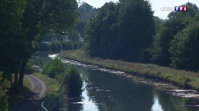 Le Canal entre Champagne et Bourgogne fermé à cause de la sécheresse