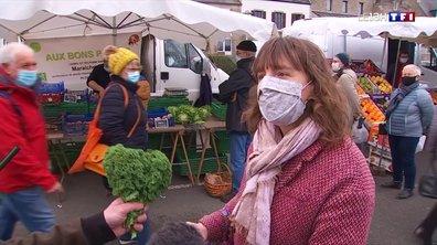 Le chou kale, un légume pas facile à trouver