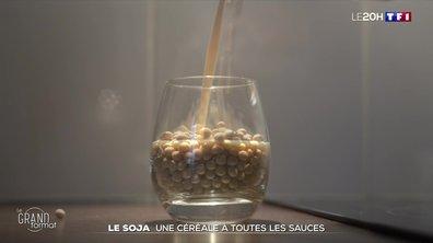 Le grand format : le boom du soja