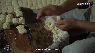 Le grand format : pourquoi les Chinois raffolent des tofus