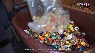 Le Grand format : que deviennent les millions de dosettes de café que nous utilisons ?