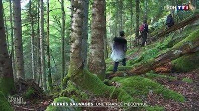 """Le grand format : une première carte de la """"France sauvage"""" réalisée par des géographes"""