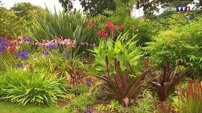 Le Jardin de Pellinec : cinq continents réunis sur un bout de terre bretonne