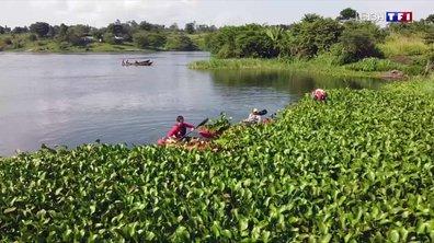 Le lac Victoria, le plus grand lac d'Afrique