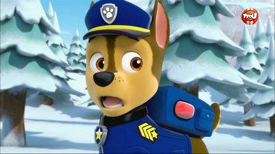 Le monstre des neiges - Paw Patrol, la Pat'Patrouille