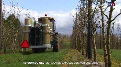 Le plan de bataille des agriculteurs pour faire face au retour du gel
