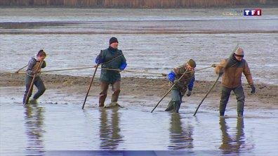 Le rendez-vous de la grande pêche d'automne dans la Meuse