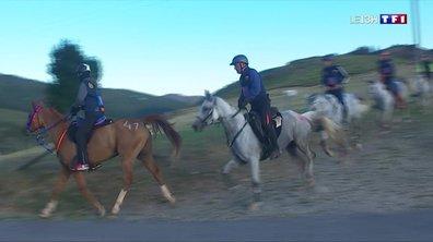 Les 160 kilomètres à cheval de Florac : une course prestigieuse d'endurance