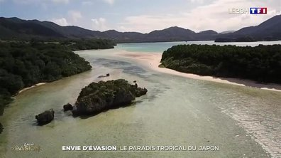 Les charmes de l'île paradisiaque d'Ishigaki au Japon