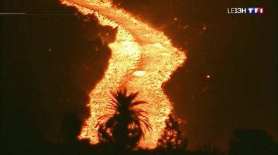 Les conséquences de l'éruption volcanique à La Palma