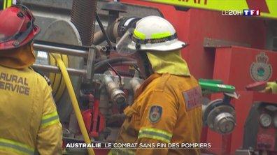Les feux repartent de plus belle en Australie