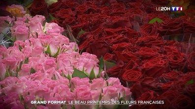 Les fleurs françaises vont-elles tirer profit de l'après Covid ?