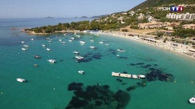 Ajaccio : les habitants et vacanciers se rafraîchissent à la plage de Marinella