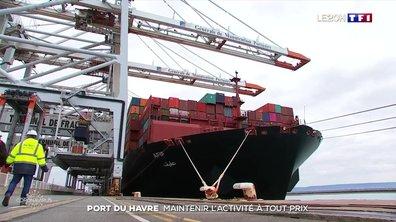 Les importations de Chine repartent et passent au port du Havre