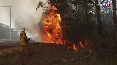 Les incendies en Australie en images