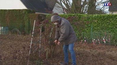 Le jardinier en hiver