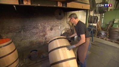 Les objets du vin (1/4) : rencontre avec Denis Morlier, tonnelier