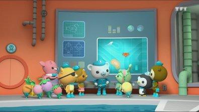 Les Octonauts & les bébés tortues de mer - Octonauts