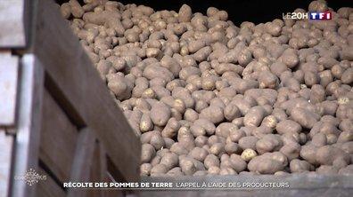 Les producteurs de pommes de terre inquiets