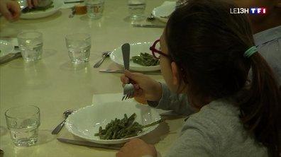 Les repas sans viande dans les cantines font polémique à Lyon
