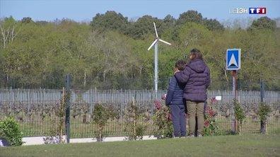 Les tours à vent, une arme des agriculteurs contre le gel
