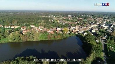 Les trésors des étangs de Sologne