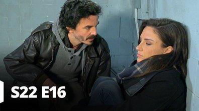 Les mystères de l'amour - S22 E16 - Faux frères