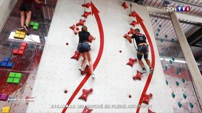 Made in France : le spécialiste tricolore des salles d'escalade
