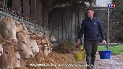 Mal-aimés : le ras-le-bol des agriculteurs