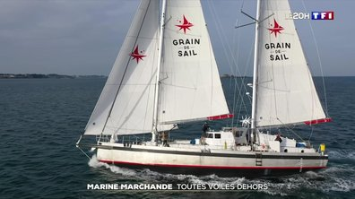 Marine marchande : un potentiel écologique et économique à exploiter