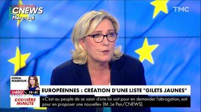 Ce que Marine Le Pen pense VRAIMENT de la liste gilets jaunes aux européennes