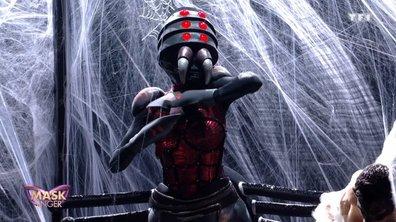 RÉVÉLATION - Qui est Araignée dans Mask Singer ?