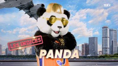 Mask Singer - Indices : Panda (Emission 1)
