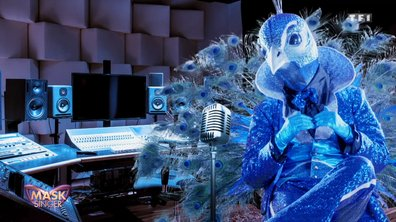 Mask Singer - Indices : Paon (Emission 3)