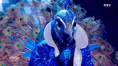 Mask Singer - Paon chante « I'm still standing » d'Elton John